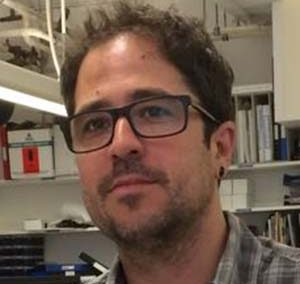 Isaac Garcia-MurillasInstitute of Cancer Research, UK